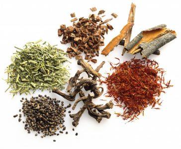 getrocknete Pflanzen tibetischer Rezepturen