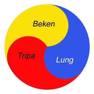 Lung Tripa Beken