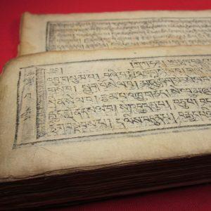 gueshy_tibetisches_medizin_buch