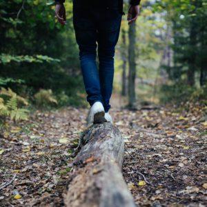Person läuft in Richtung Wald auf einem Baumstamm