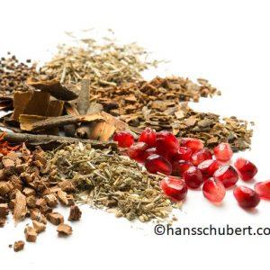 tibetische_rezepturen_pflanzen