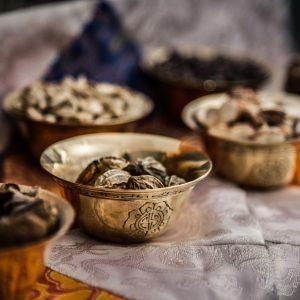 pflanzen_tibetische_medizin_myrobalane